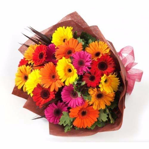 BLOOMS AND BOUQUETS Flower Bouquet - 24 Mixed Gerberas, 1 pc