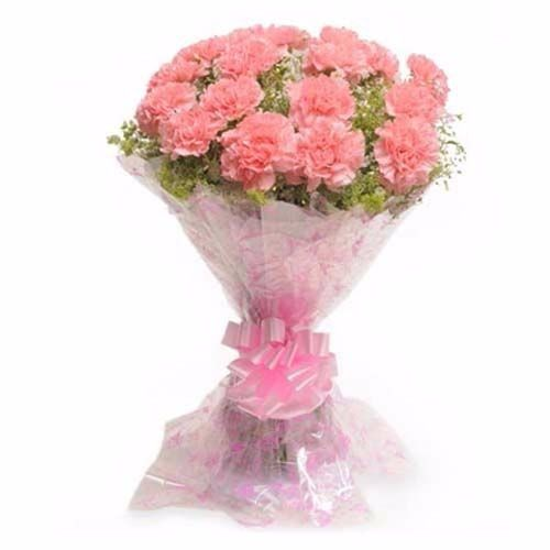 BLOOMS AND BOUQUETS Flower Bouquet - 12 Pink Carnations, 1 pc