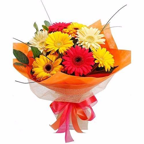 SATISH FLORIST Flower Bouquet - 8 Delightful Mixed Gerberas, 1 pc