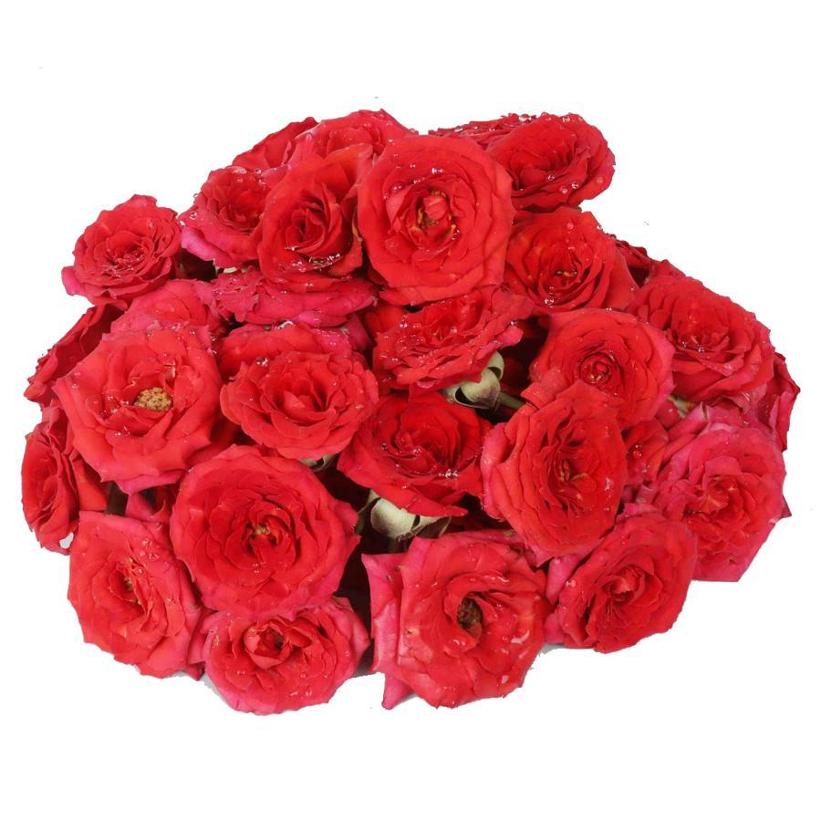 Buy Hoovu Fresh Assorted Roses Puja Flowers Online At Best Price Bigbasket